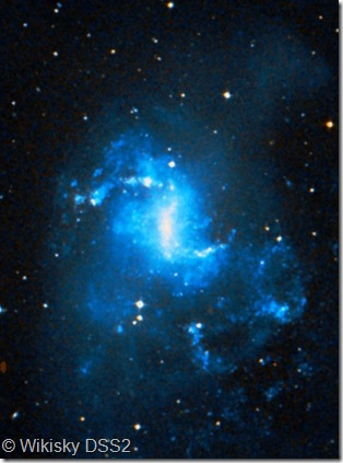 NGC 1313 Wikisky DSS2