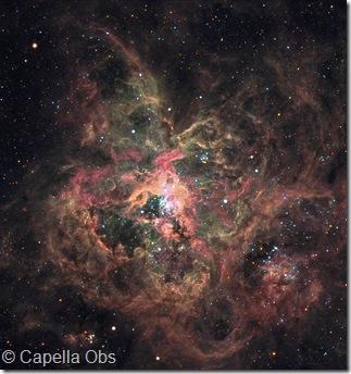 NGC 2070 Capella Obs Prim