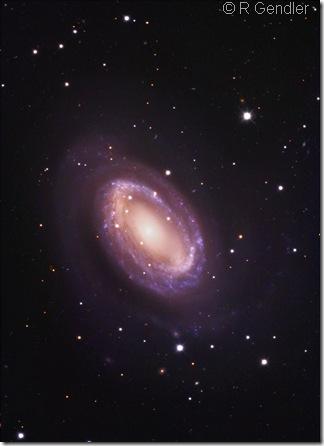 NGC 4725 R Gendler JM
