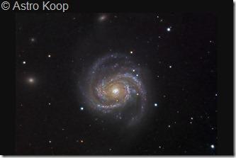 M 100  NGC 4323 28 Astro Koop  T300