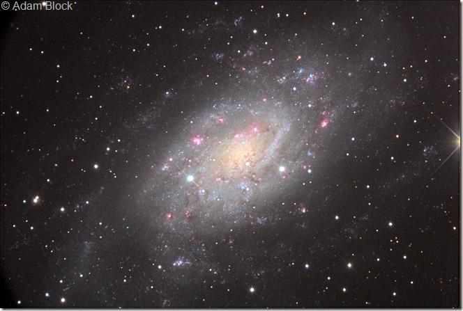 NGC 2403 Adam Block