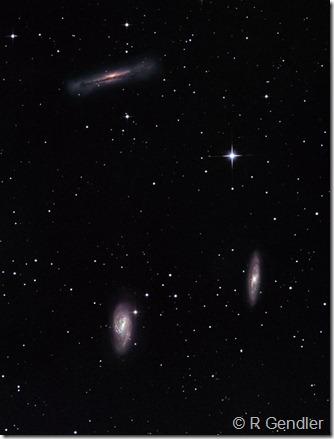 M 65 66  NGC 3628 Rob Gendler