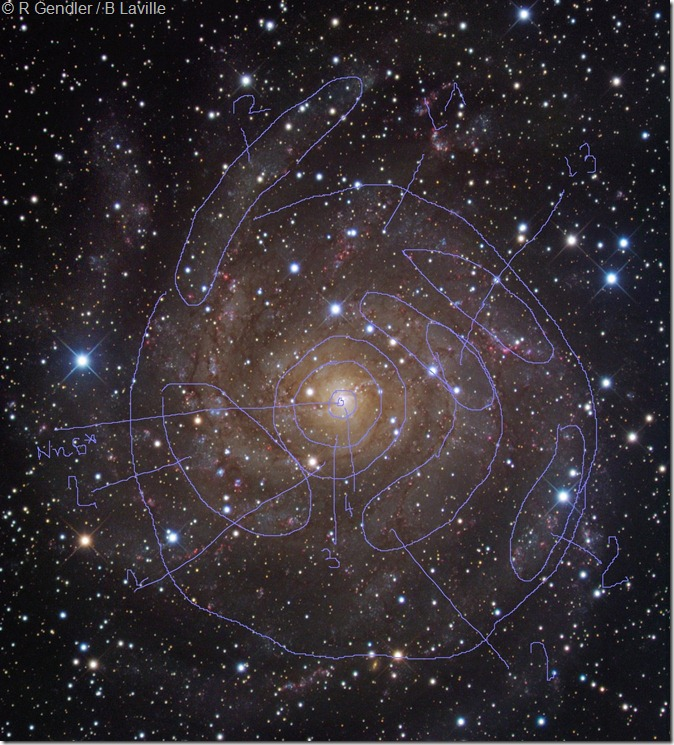 IC 342 Rob Gendler NML_2