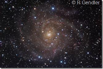 IC 342 Rob Gendler NML_3