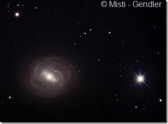 M 58 Misti Gendler