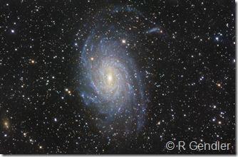 NGC 6744 R Gendler