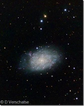 NGC 7793 Daniel Verschatse