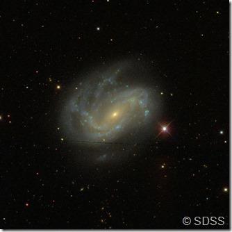 NGC 4051 Wikisky SDSS_2