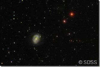 NGC 6217 SDSS