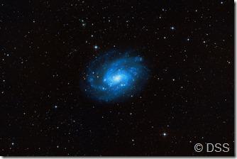 NGC 300 DSS