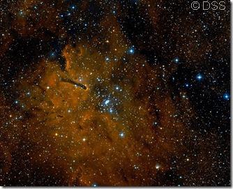NGC 6823 DSS