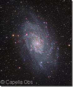M 33 very big  Capella Obs orig