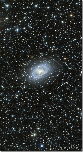 NGC 6300 Rose obs large