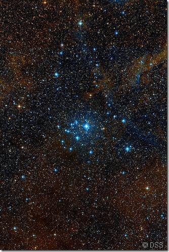 IC 2395 DSS