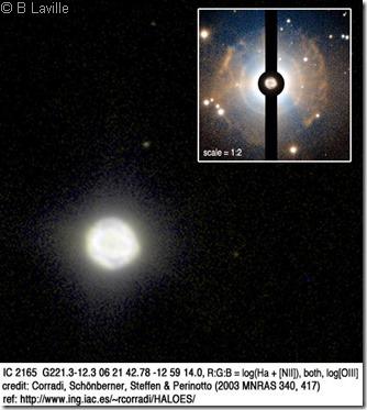 IC 2165 halo PNIC