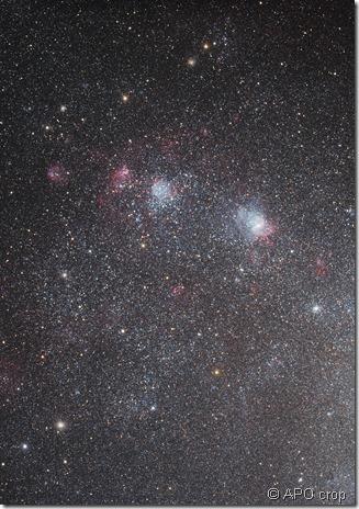 NGC 292 APO crop