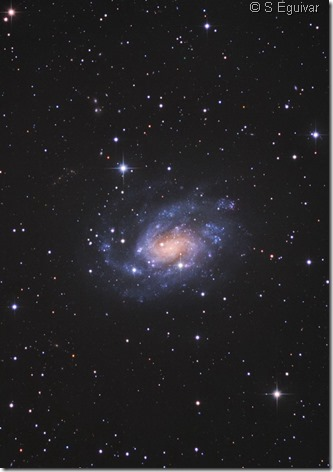NGC 300 S Eguivar