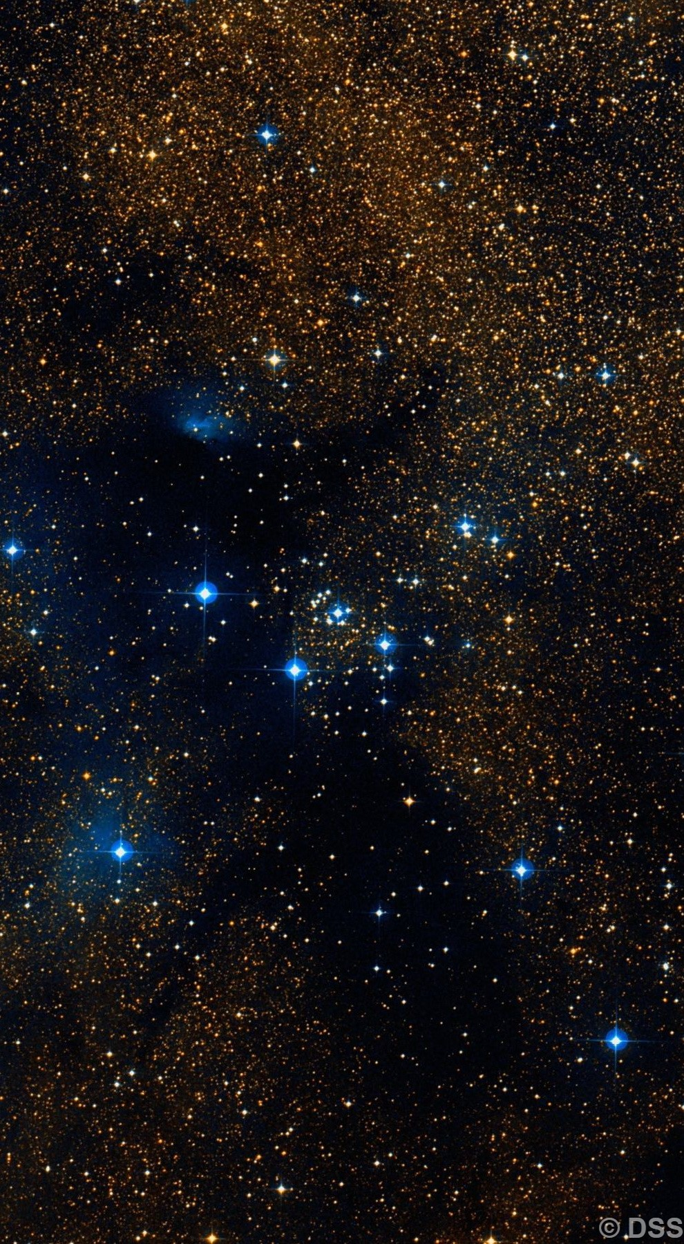 NGC 6250
