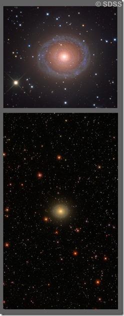 NGC 7217 Capella Obs & SDSS