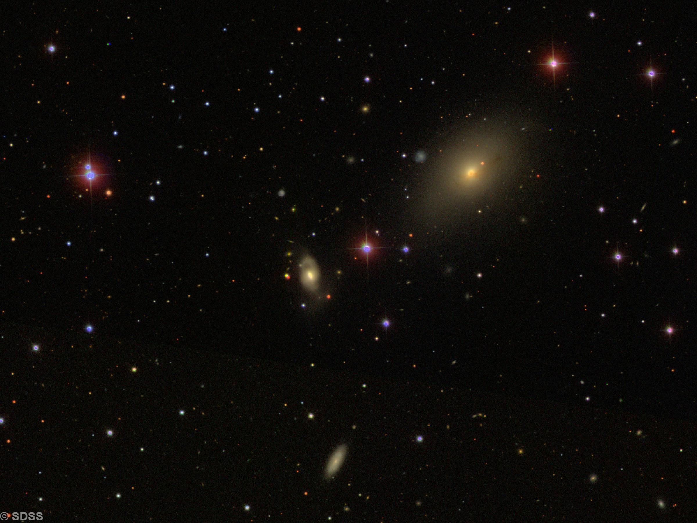 NGC 2911 & NGC 2914 = ARP 232