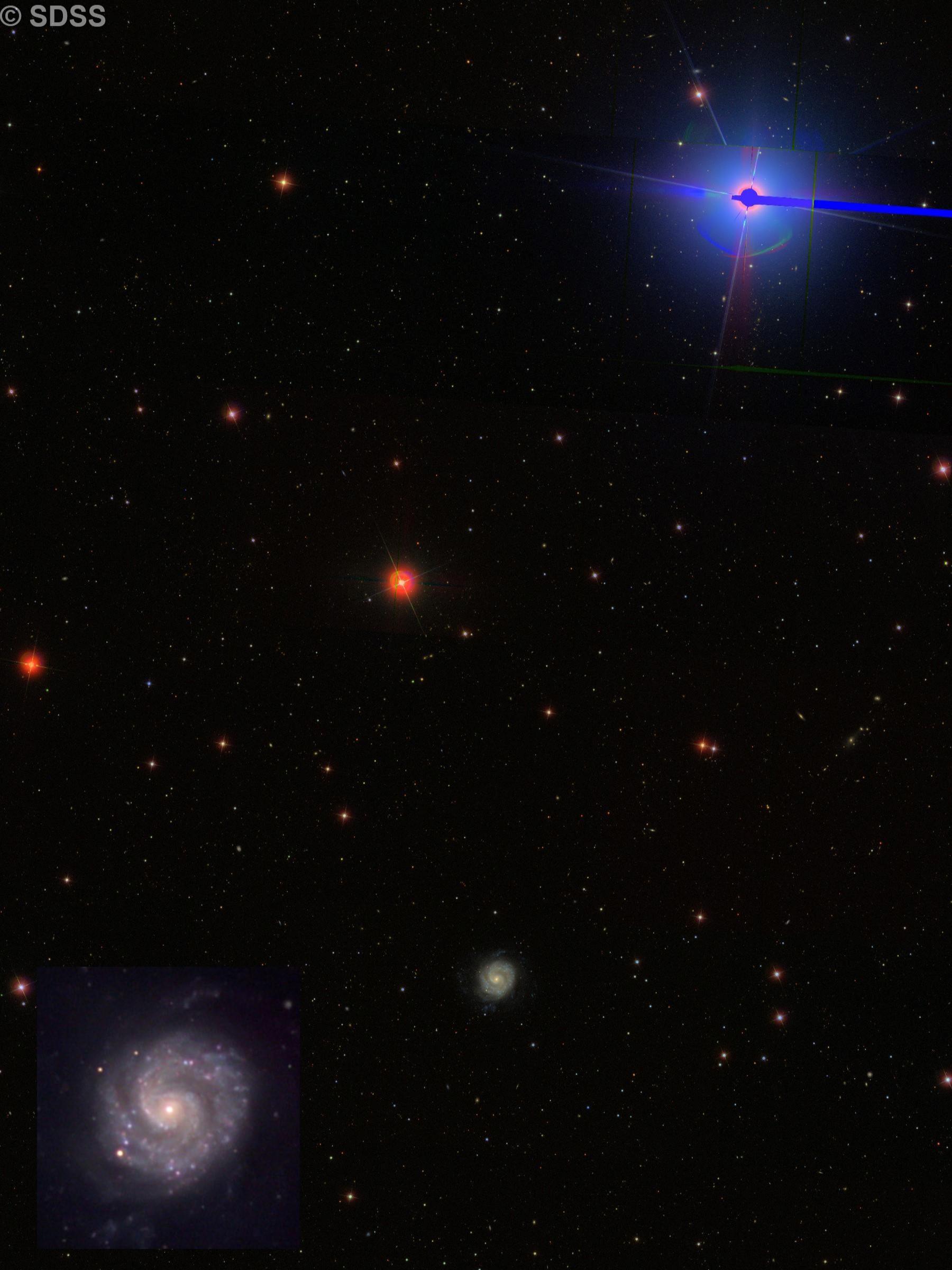 NGC 3596