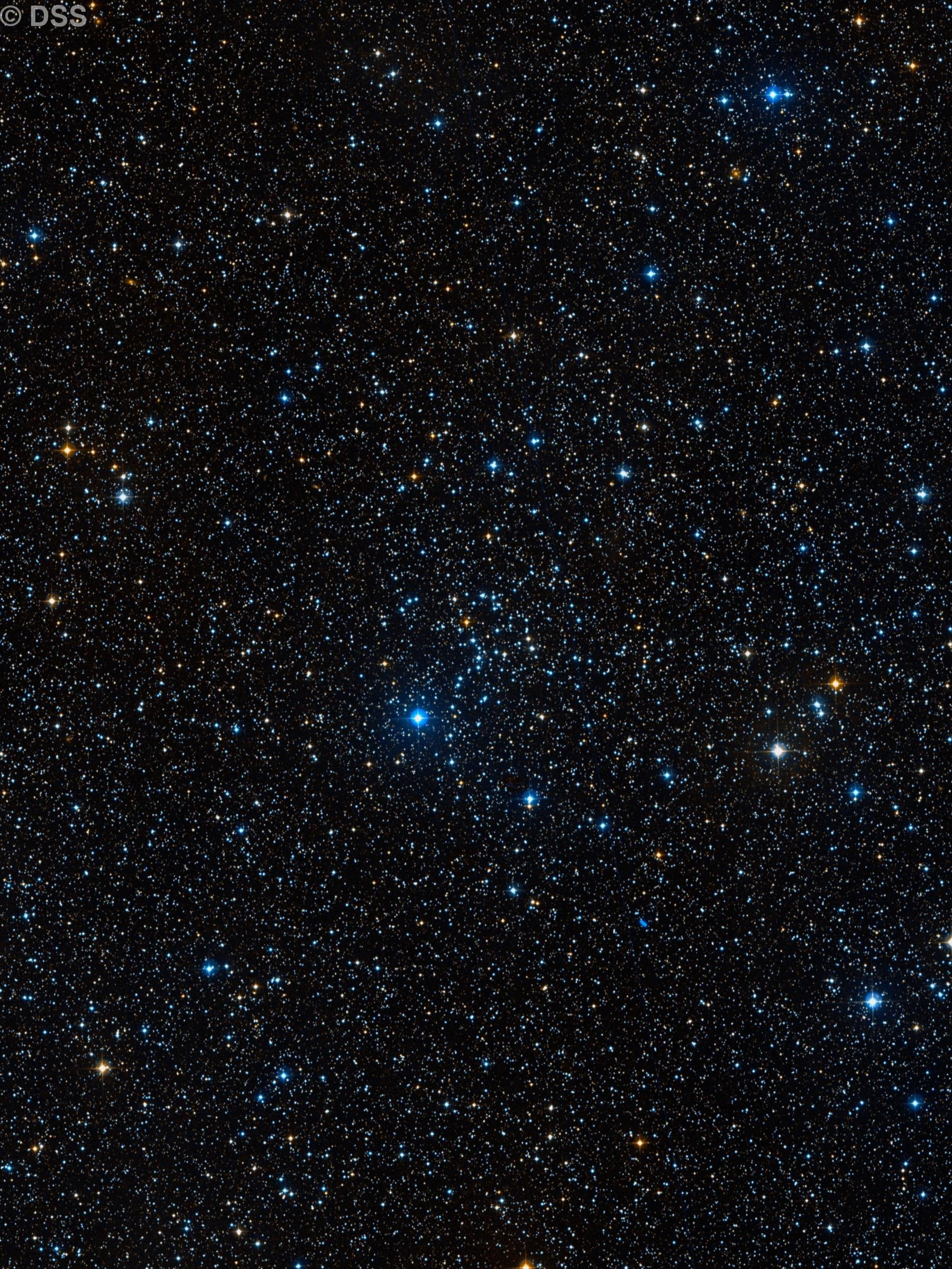 NGC 1664, The Kite Cluster