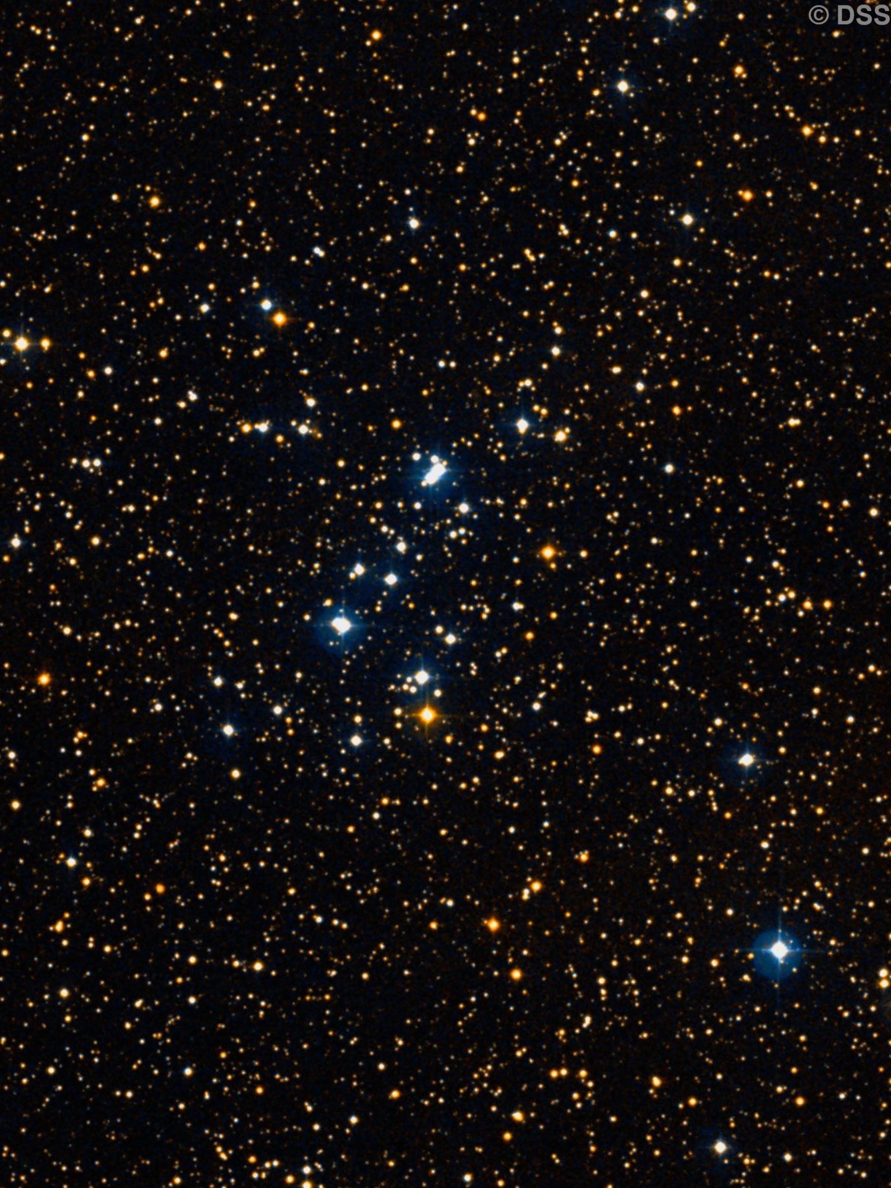 NGC 1778
