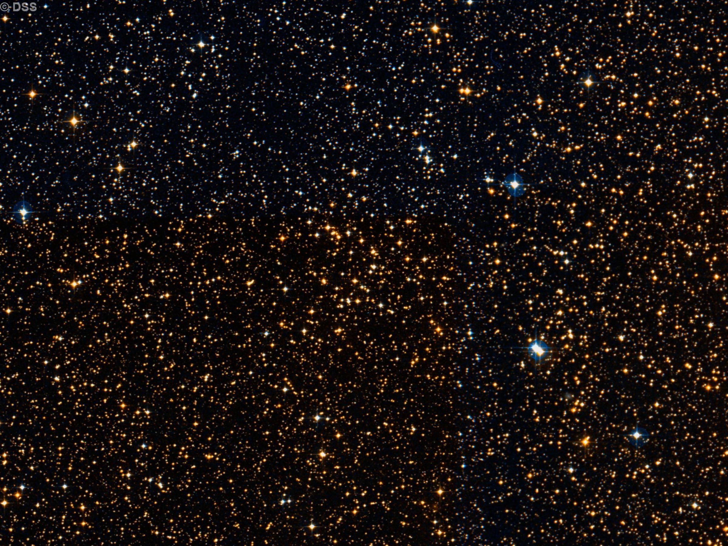 NGC 2479