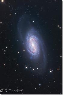 NGC 2903  UGC 5086 Rob Gendler