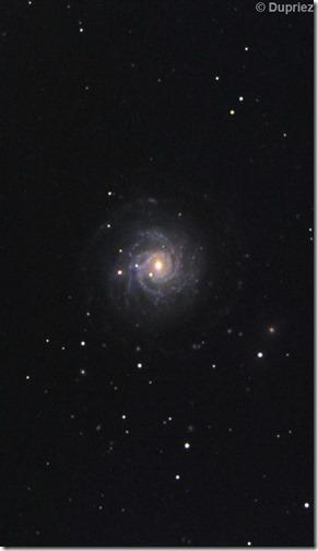 NGC 3344 Christian D Astrosurf crop