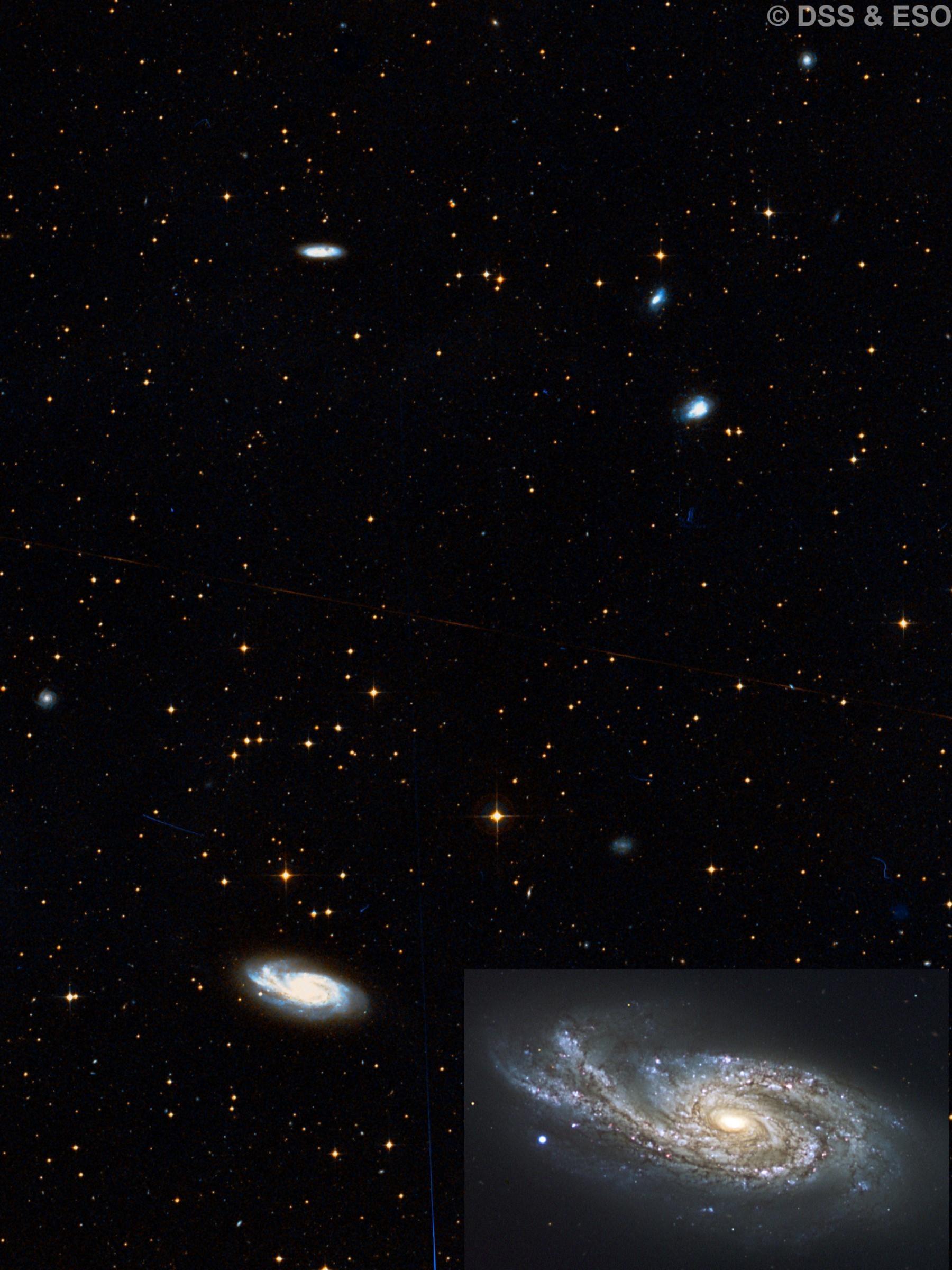 NGC 899, NGC 907, NGC 908, IC 223