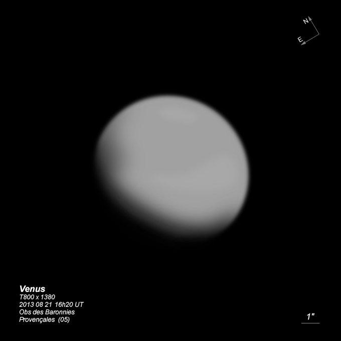 venus-t800-bl-2013-08-21-label