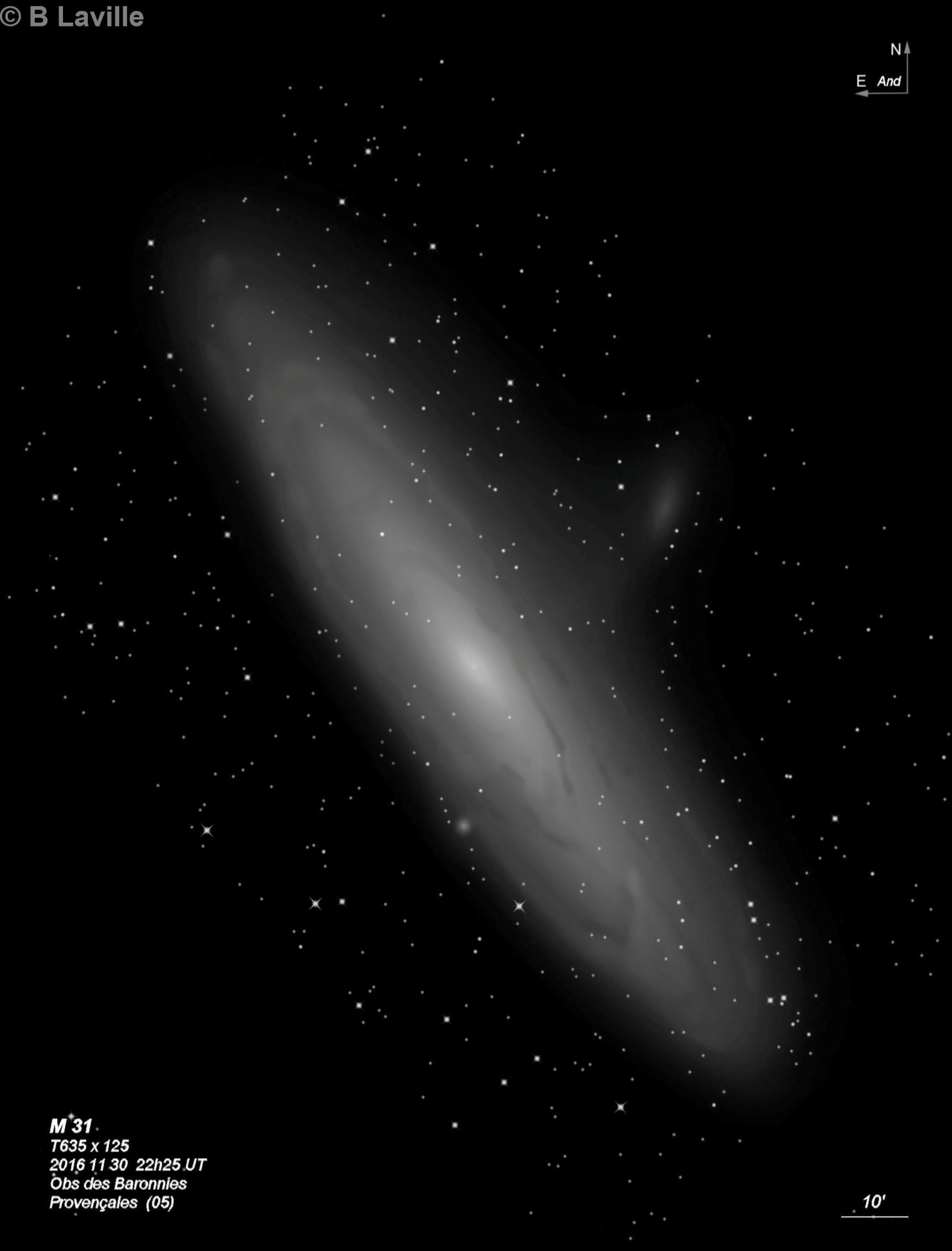 M 31 32 110  NGC 206