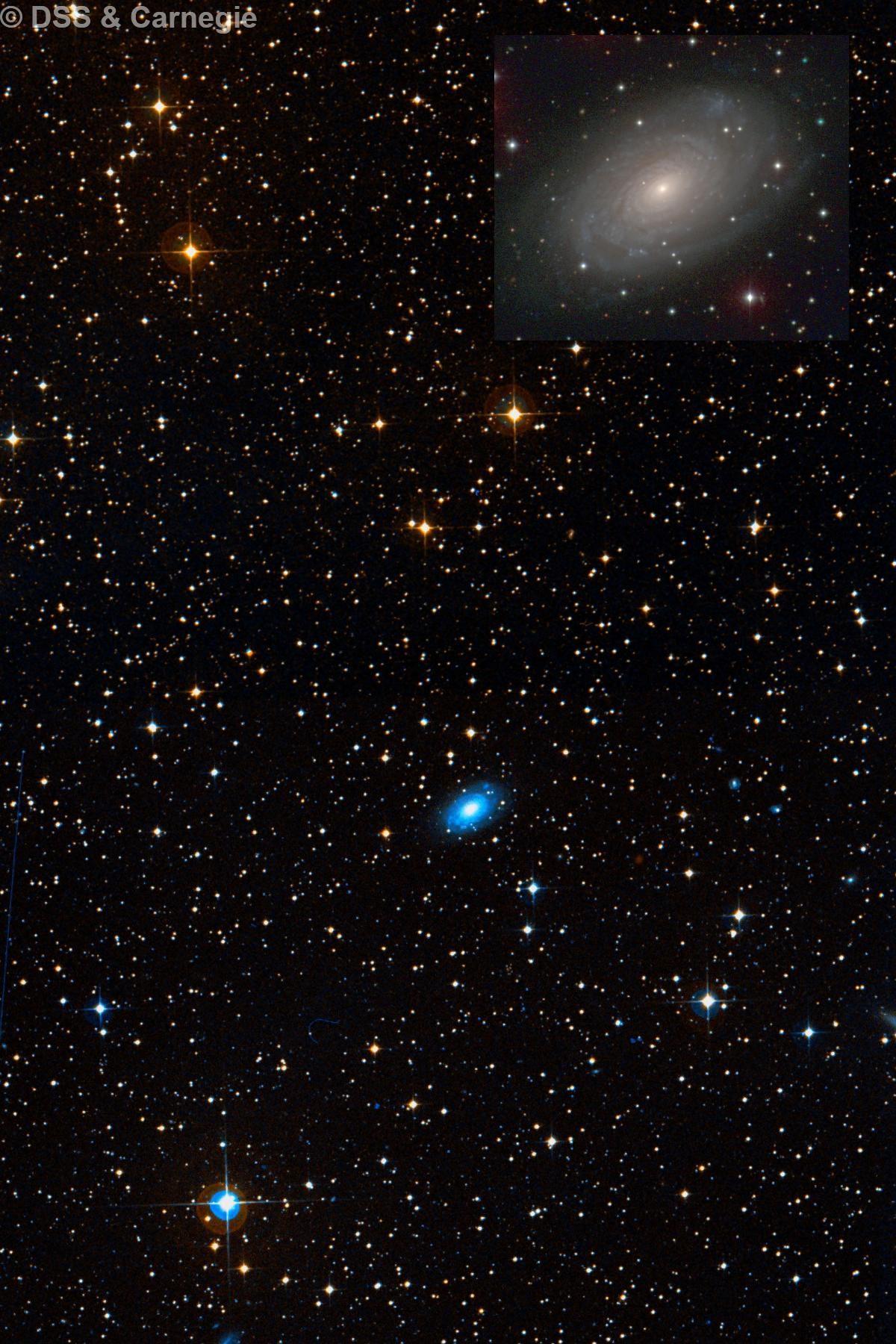 NGC 3038
